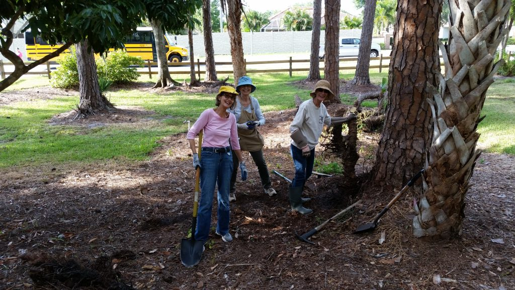 Meg Larrabee, Holly Vincent and Emily Miller loosened tree trunks to be pulled.