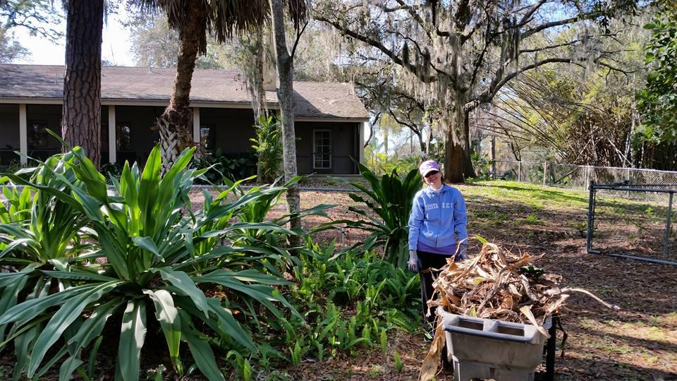 Weekly Volunteer Opportunities at OJT Park